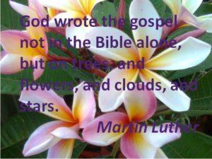 God wrote the gospel in flowers